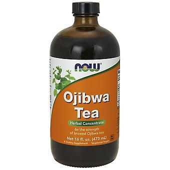 Now Foods Ojibwa Tea Concentrate Liquid 473 ml