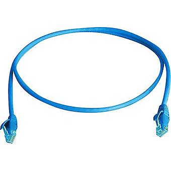 Telegärtner RJ45 Networks Cable CAT 5e U/UTP 1 m Sky blue Flame-retardant, Halogen-free