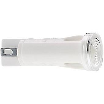 RAFI 1.69.507.105/1002 Signal Light With Lamp 1.2 W Colourless