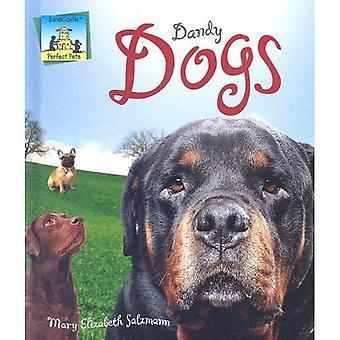 Dandy Dogs (Perfect Pets)