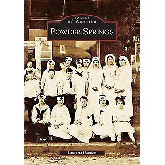 Powder Springs by Lauretta Hannon - 9780738517230 Book