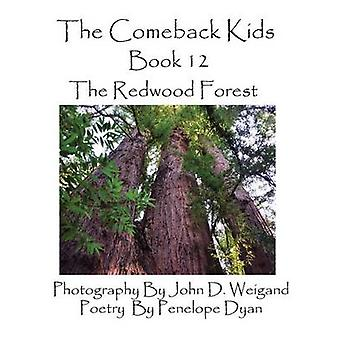 The Comeback Kids Book 12 the Redwood Forest by Dyan & Penelope