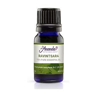 Ravensara Anisada Etherische Olie 10 ml