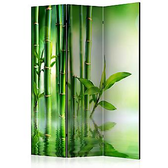 3-teiliges Paravent - Bamboo Grove [Room Dividers]