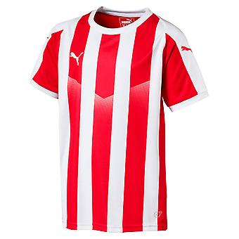 PUMA LIGA Jersey Striped Junior Kurzarm