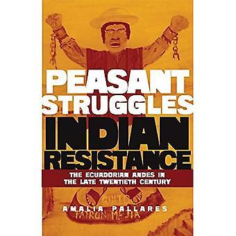 Från bonden kamper till indiska motstånd: ecuadorianska Anderna i slutet av nittonhundratalet