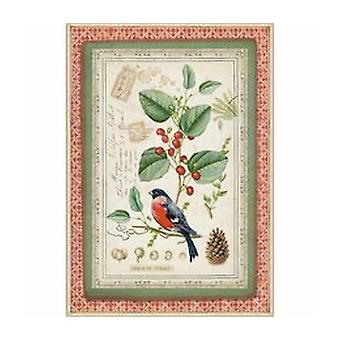 Stamperia Rice Paper A4 Winter Botanic Little Bird sur Holly