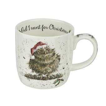 Wrendale Owl I Want for Christmas Mug