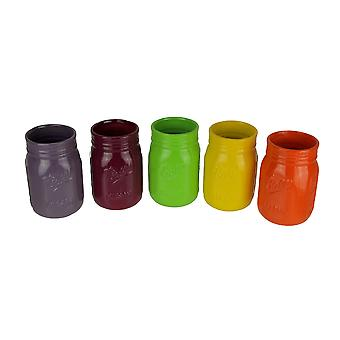 Bright and Colorful Ceramic Mason Jar Planters Set of 5