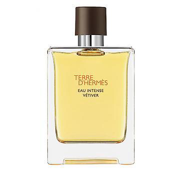 Terre D-apos; Herm s-intense Vetiver parfum water