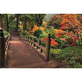 Wallpaper Mural Autumn Bridge