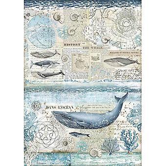 Stamperia Riisipaperi A3 Valaan historia