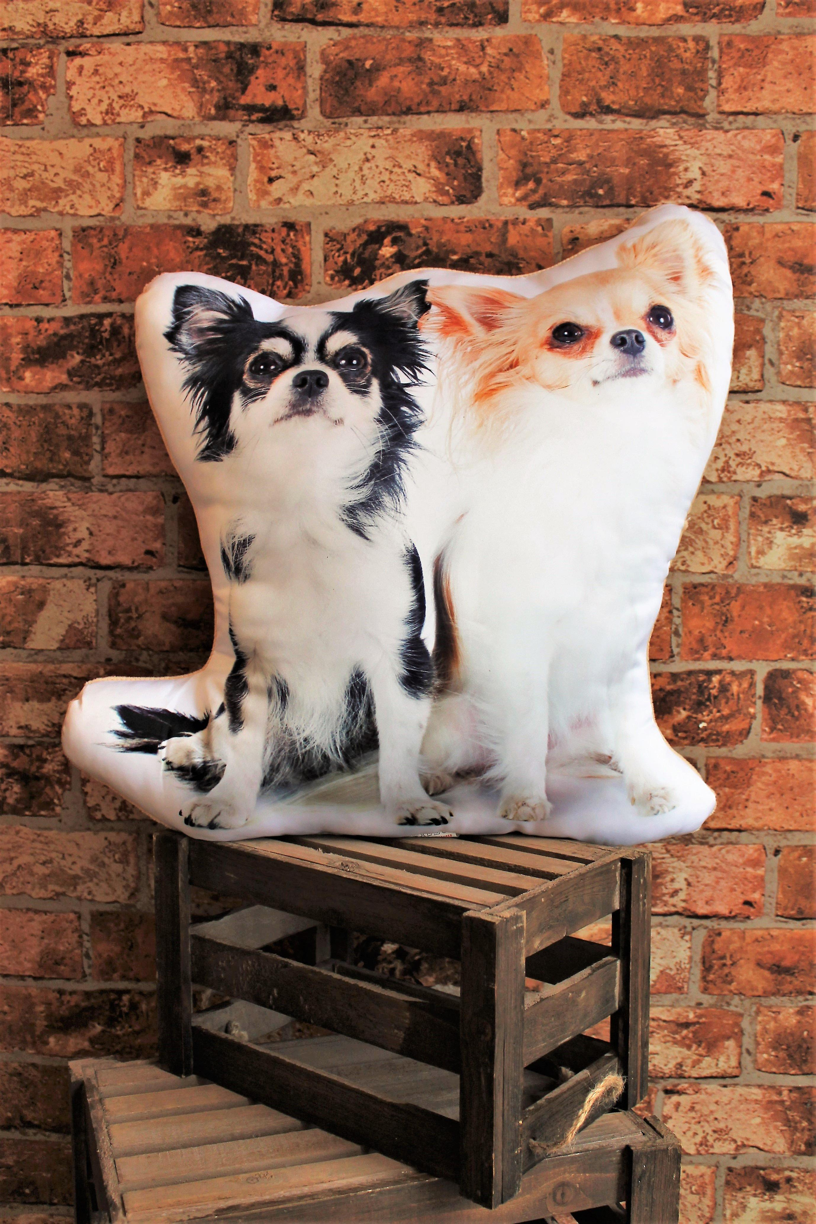 Adorable long haired chihuahua shaped cushion