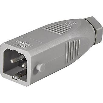 Hirschmann 930620106-1 Mains connector STAS Plug, straight Total number of pins: 2 + PE 16 A Grey 1 pc(s)
