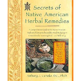 Secrets of Native American Herbal Remedies - A Comprehensive Guide to