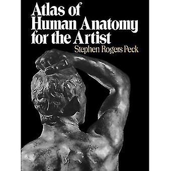 Atlas der menschlichen Anatomie für Künstler (Galaxy Bücher)