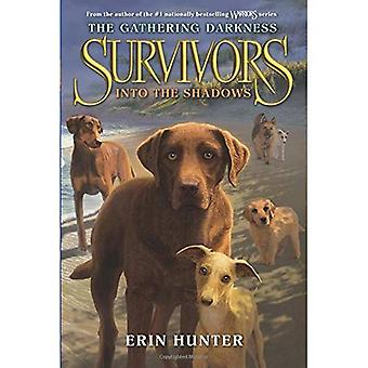 Survivors: The Gathering Darkness #3: Into the Shadows (Survivors: The Gathering Darkness)
