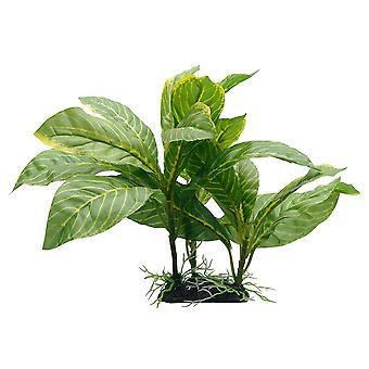Fluval Yellow Striped Spathiphyllum Plant 22cm