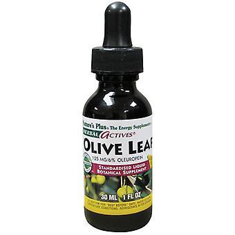 Nature's Plus Herbal Actives Liquid Olive Leaf 125mg 30ml (7849)