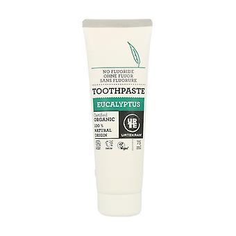 Eucalyptus Toothpaste 75 ml
