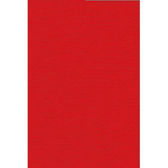 Papicolor 6X Cardboard 210X297mm-A4 Red