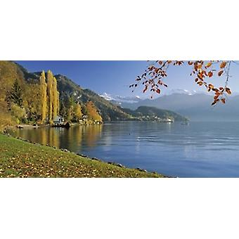 Schweiz Kanton Luzern See Vierwaldstattersee Vitznau Panoramablick auf die Berge rund um einen See Poster Print