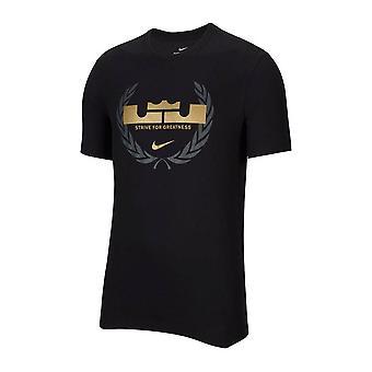 נייקי Drifit לברון לוגו CV2047010 כדורסל כל השנה גברים חולצת טריקו