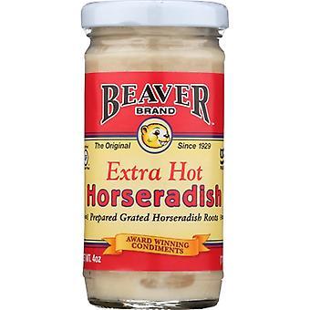 Beaver Horseradish Xhot, Case of 12 X 4 Oz