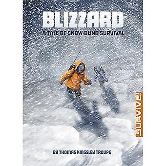 Blizzard: A Tale of Snow-Blind Survival (Survive!)