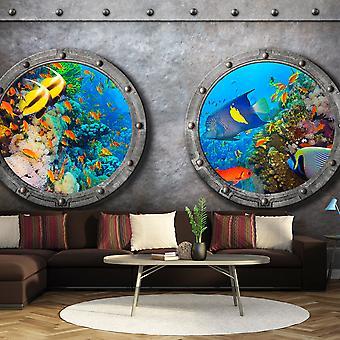 Wallpaper - Window to the underwater world