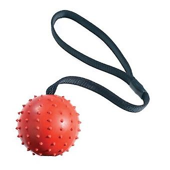 Classic Rubber Pimple Dog Ball On Rope