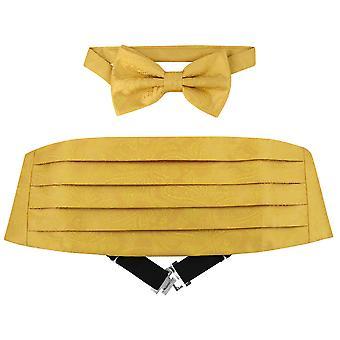 Cumberbund & BowTie PAISLEY Design Men's Cummerbund Bow Tie Set