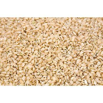 Riz Short Grain Brow N -( 22lb )