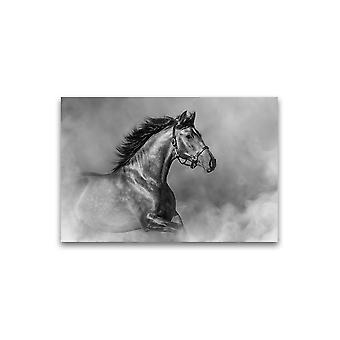Paard running in mist poster -Afbeelding door Shutterstock
