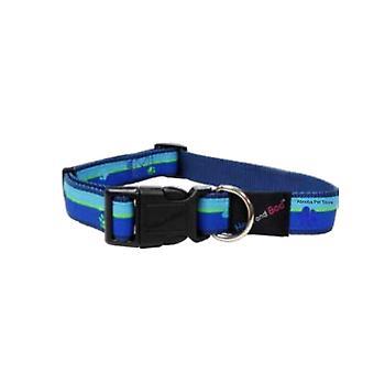 Hem & Boo Nylon Training Collar Paws & Stripes Blue - 12mm x 30-40cm