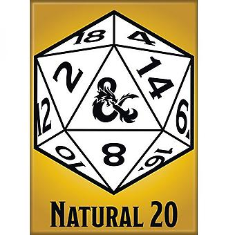 Dungeons & Dragons Natural 20 Magnet