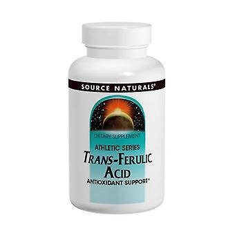 Kilde Naturals Trans-Ferulic Acid, 250 MG, 30 Tabs