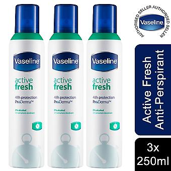 Vaseline Active Fresh Anti-Perspirant for Women, 250ml, Pack of 3