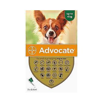 Perros Abogados Menores de 4kg (8.8lbs) - 3 Pack