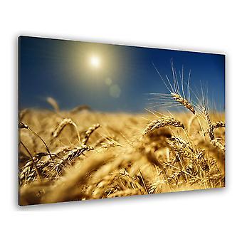 Tableau deco champs de blé couchant - 80x50 cm