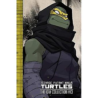 Teenage Mutant Ninja Turtles: The IDW Collection� Volume 13 (TMNT IDW Collection)