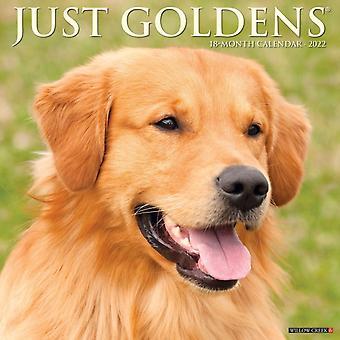 Just Goldens 2022 Wall Calendar Golden Retriever Dogs Dog Breed av Willow Creek Press