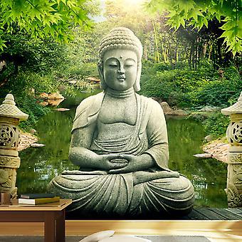 Fototapetti - Buddha's garden
