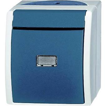 Busch-Jaeger 2621 WGL-53 Wet room switch product range Switch Ocean (surface-mount) Blue, Green