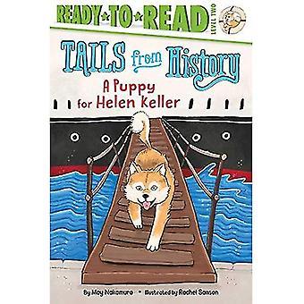 Un chiot pour Helen Keller (queues de l'histoire)