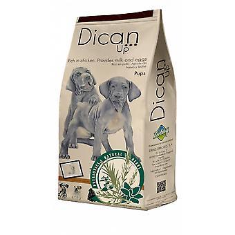 Dican Up Trockenfutter für Hunde Pups (Hunde , Hundefutter , Trockenfutter)
