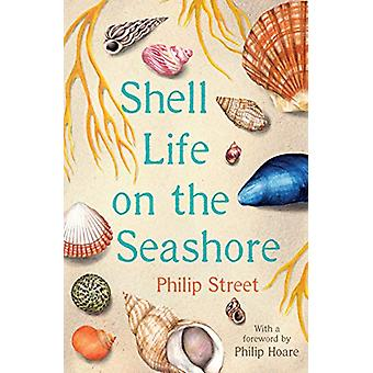 Shell Life on the Seashore by Philip Street - 9780571354450 Book
