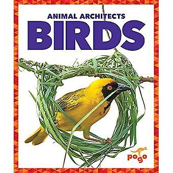 Birds (Animal Architects)
