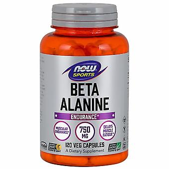 Now Foods Beta Alanine, 750 mg, 120 Caps
