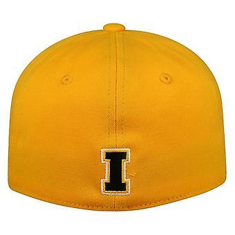 Iowa Hawkeyes NCAA TOW Premium Collection -muisti sopii hattuun
